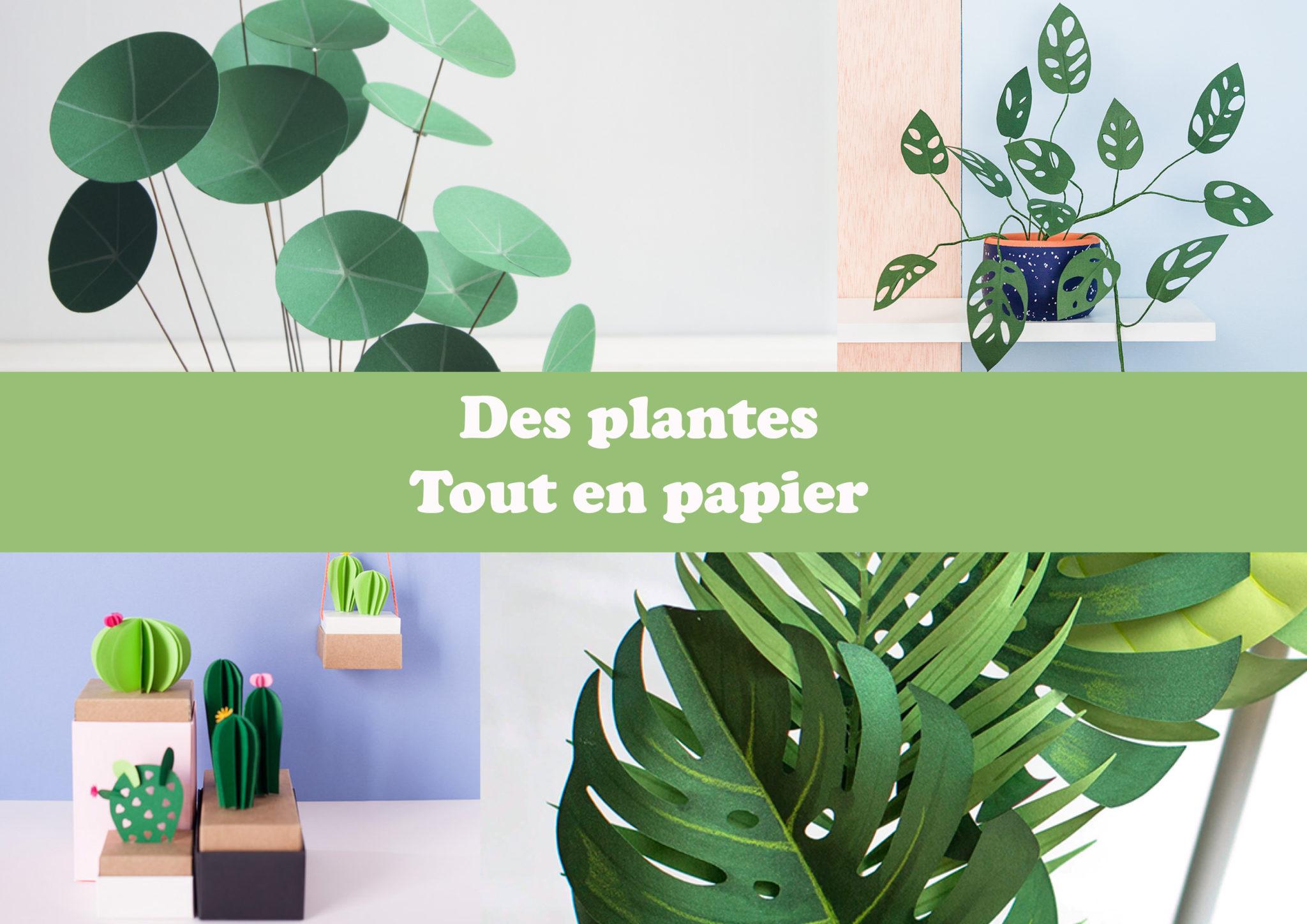 Des plantes tout en papier